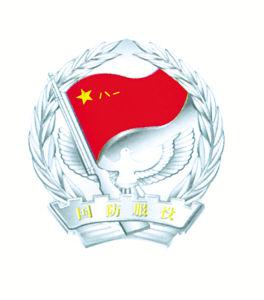 07军服服饰徽章全套 图说图片