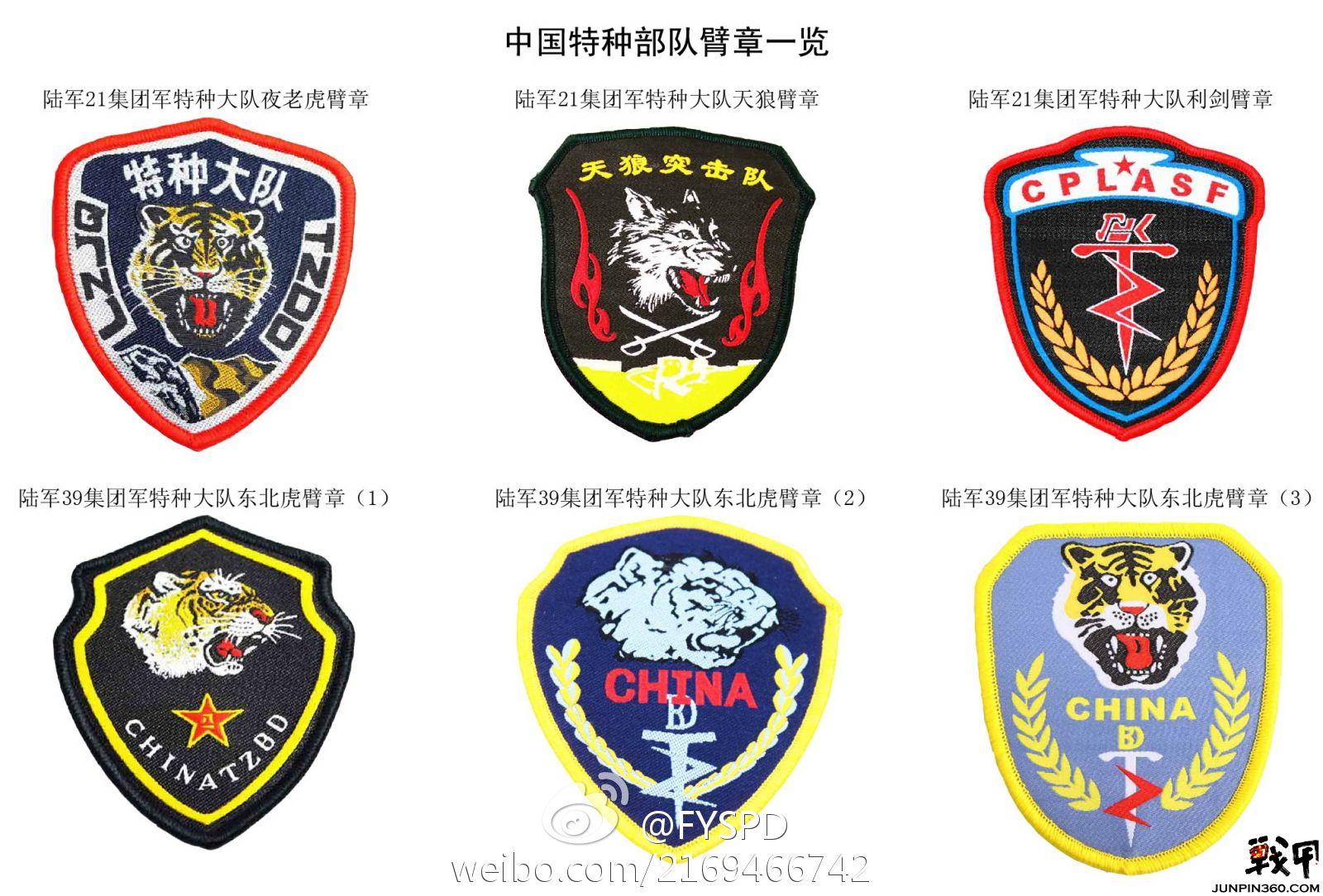 利剑队徽图片 中国特种部队臂章一览图片