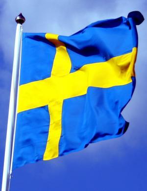 北欧勇士——瑞典军队掠影(1)国防力量